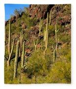 Sonoran Desert West Saguaro National Park Fleece Blanket