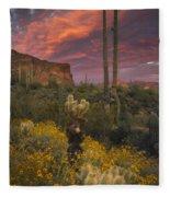 Sonoran Romance Fleece Blanket