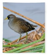 Sora Rail Fleece Blanket