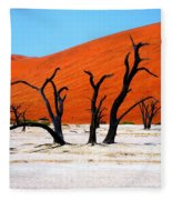 Sossusvlei Scene Fleece Blanket