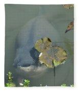 #south American Pacu Fleece Blanket