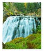 South Fork Falls  Fleece Blanket