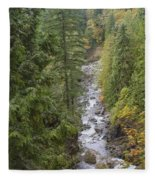 south fork Snoqualmie river Fleece Blanket