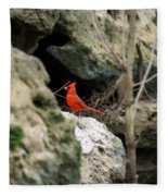 Southern Red Bird By The Flint River Fleece Blanket