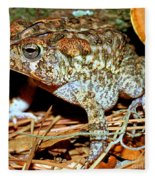 Southern Toad Bufo Terrestris Fleece Blanket