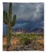 Southwest Monsoon Skies  Fleece Blanket