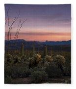 Southwest Serenity  Fleece Blanket