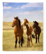 Southwest Wild Horses On Navajo Indian Reservation Fleece Blanket