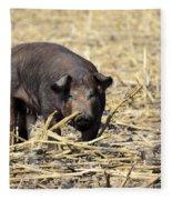 Sow In The Field Fleece Blanket