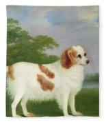 Spaniel In A Landscape Fleece Blanket