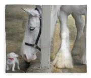 Sparky And Sterling Silvia Fleece Blanket