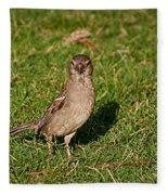 Sparrow 1 Fleece Blanket