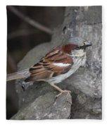 Sparrow Fleece Blanket