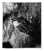 Sparrow On A Tree Fleece Blanket