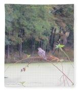 Sparrow On Arc Fleece Blanket