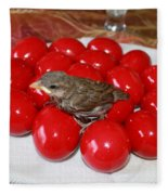 Sparrow On Red Eggs Fleece Blanket