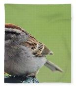Sparrow Snack Fleece Blanket