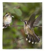 Speckled Hummingbirds Fleece Blanket