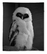 Speckled Owlet Fleece Blanket