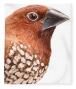 Spice Finch Lonchura Punctulata Portrait Fleece Blanket