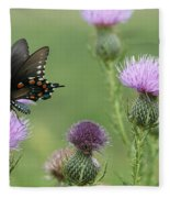 Spicebush Swallowtail Butterfly On Bull Thistle Wildflowers Fleece Blanket