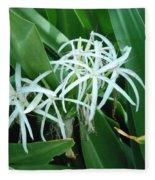 Spider Flower In Sint Maarten Fleece Blanket