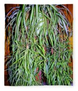 Spider Plant Fleece Blanket