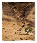 Spieden Island 2 Fleece Blanket