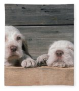 Spinone Puppies Fleece Blanket