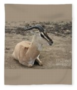 Spiral Horned Antelope Fleece Blanket