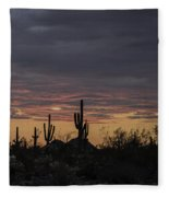 Splender At Sunset Fleece Blanket