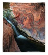 Splendor On Quail Creek Fleece Blanket