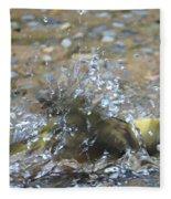 Splish Splash Bird Bath Fleece Blanket