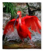 Splish Splash - Red Ibis Fleece Blanket