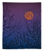 Spooky Beauty Fleece Blanket