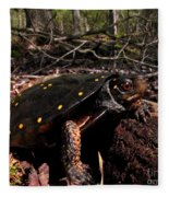 Spotted Turtle Fleece Blanket