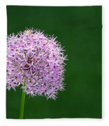Spring Allium Fleece Blanket