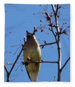 Spring Bird Singing Fleece Blanket