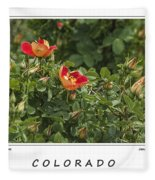 Spring Blooms In Colorado Fleece Blanket