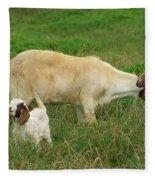 Spring Born Fleece Blanket