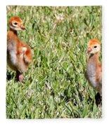 Spring Chicks  Fleece Blanket