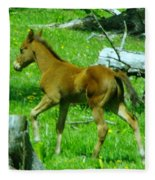 Spring Colt  Fleece Blanket
