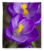 Spring Crocus Fleece Blanket
