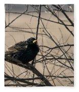 European Starling Fleece Blanket