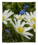 Spring Daisies Fleece Blanket