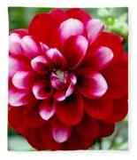 Red Spring Flower Fleece Blanket
