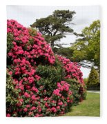 Spring In Muckross Garden - Ireland Fleece Blanket