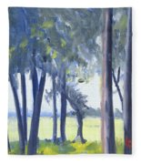 Spring Marsh From Deerfield Road Fleece Blanket