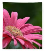Spring Pink 2014 Fleece Blanket