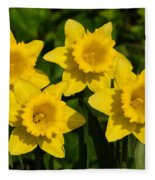 Spring Quartet Fleece Blanket